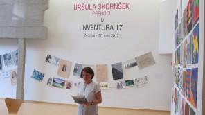 Javno vodstvo po razstavah Inventura 17 in Prehodi