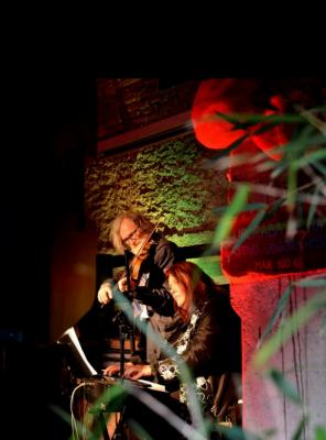 Glasbene slike: Branko Brezavšček, violina, Maja Tajnšek, klavir